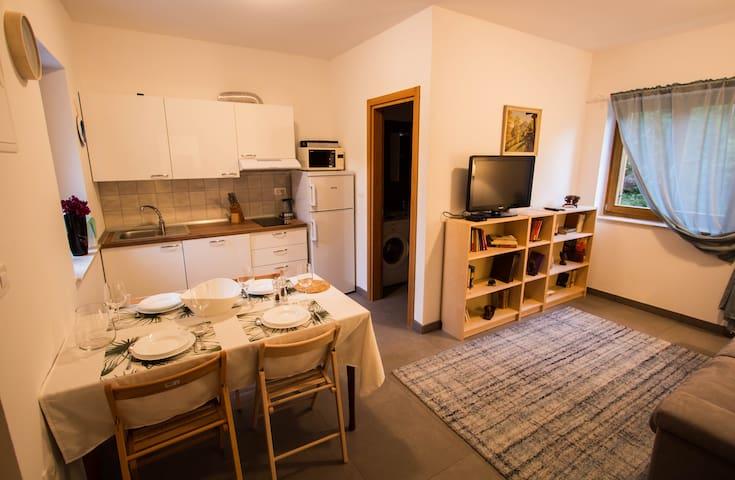 Apartment Lucija