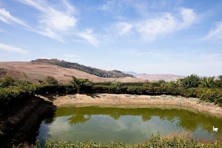 Al Lago Verde Stanza Fichi D'india - Alia