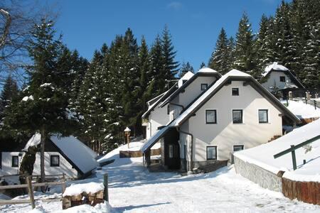 ROGLA SMREKA ski resort - Resnik - Apartment
