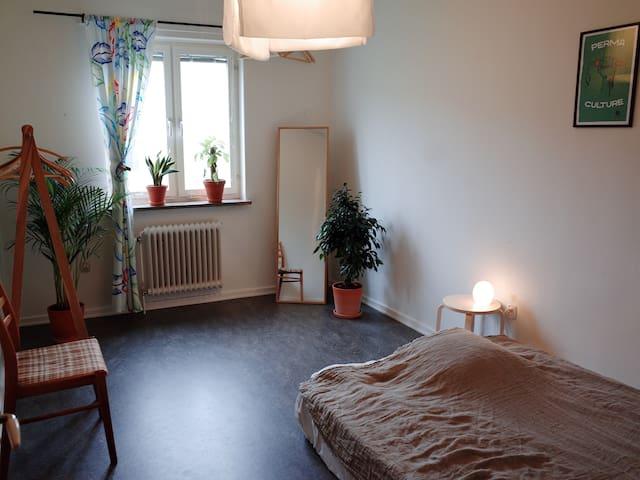 Green, cozy room near city park & communications