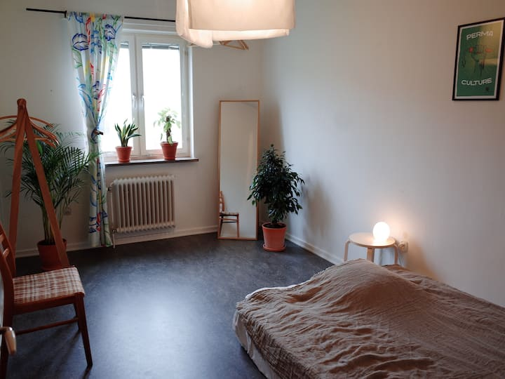 Green, cozy room near city park & communications