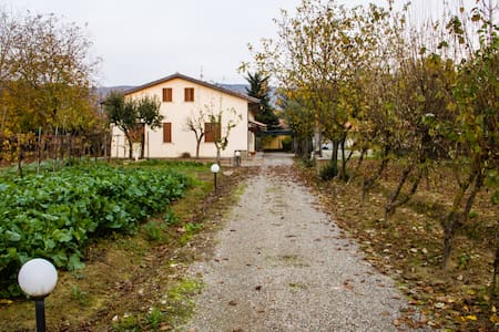 House in the countryside of Arezzo - Arezzo - House