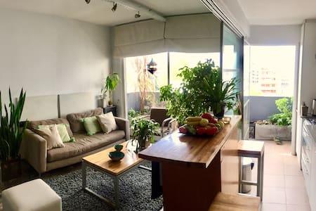 Damian`s House. In GURRUCHAGA' street PALERMO SOHO