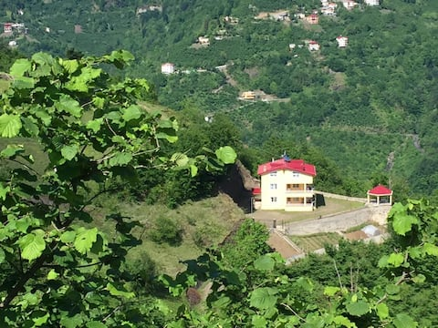 Vadi Manzaralı Dağ Evi (tüm villa kiralama)