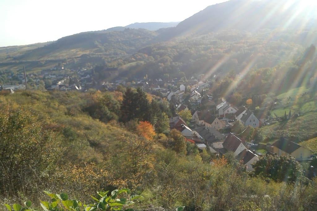 Blick über Alberweiler