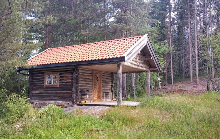 Excotic Norwegian cabin - Notodden - House
