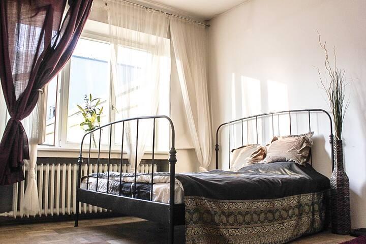 Large sunny room in the center of Prague! - Praha - Apartemen