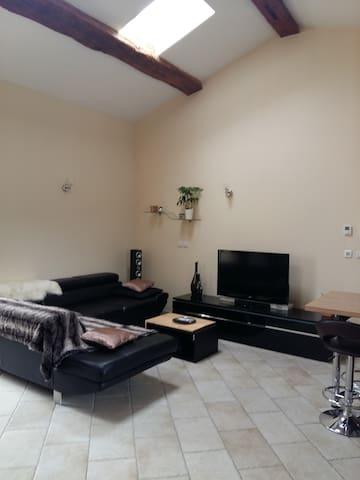 Belle chambre au coeur du Beaujolais - Limas - Lägenhet
