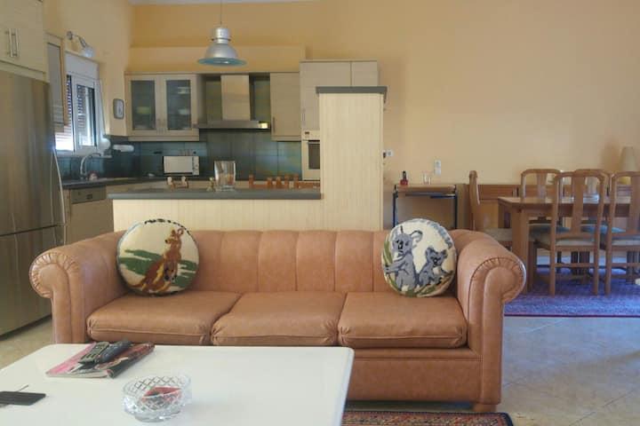 Lightfull and spacious apartment close to Chania