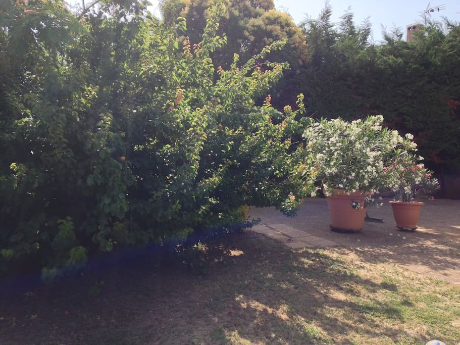 Rez jardin mezzanine terrasse et acc s piscine for Jardin louer 78