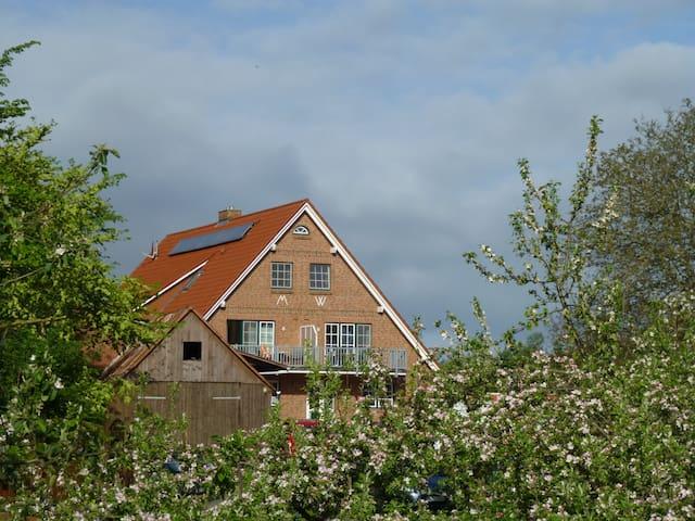 Ferienwohnung Elbinsel Krautsand - Drochtersen - Apartamento
