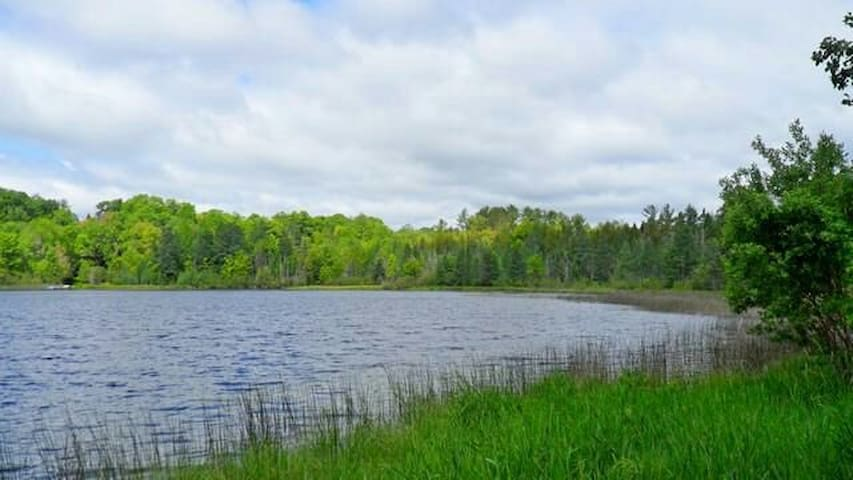 15 acre wooded lake parcel. - Town of Silver Cliff - Sátor