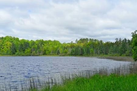 15 acre wooded lake parcel. - Town of Silver Cliff