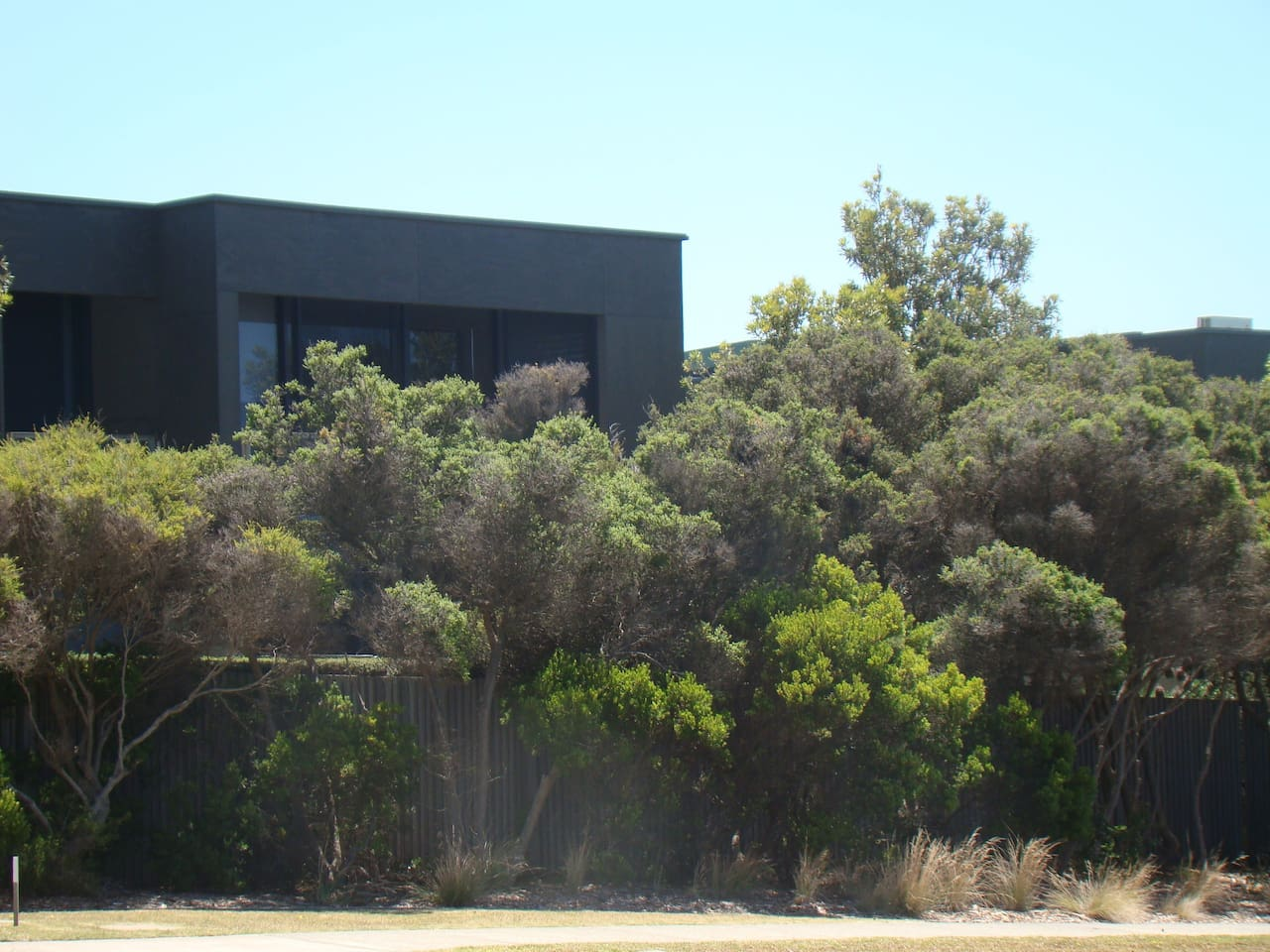 View of our House from Great Ocean Rd