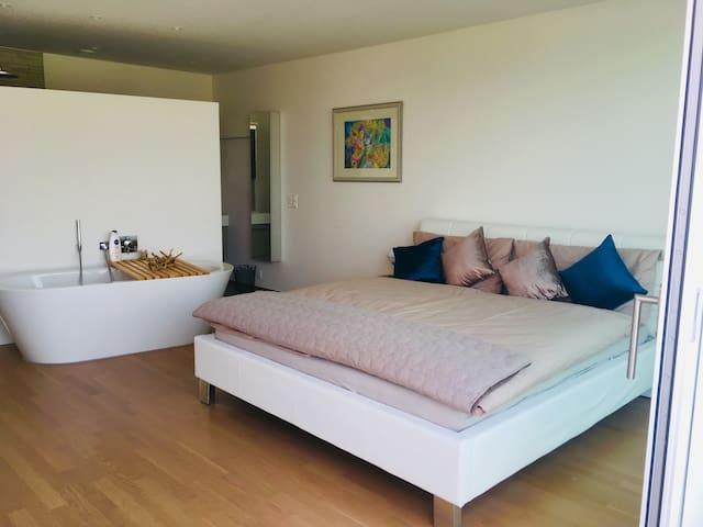 ***** Penthouse-Wohnung mit Seeblick in Luzern