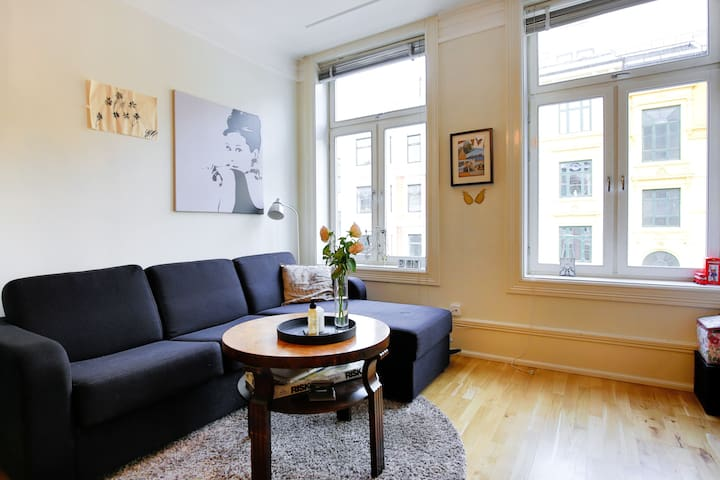 Cozy room close to the Royal Palace! - Oslo - Apartment