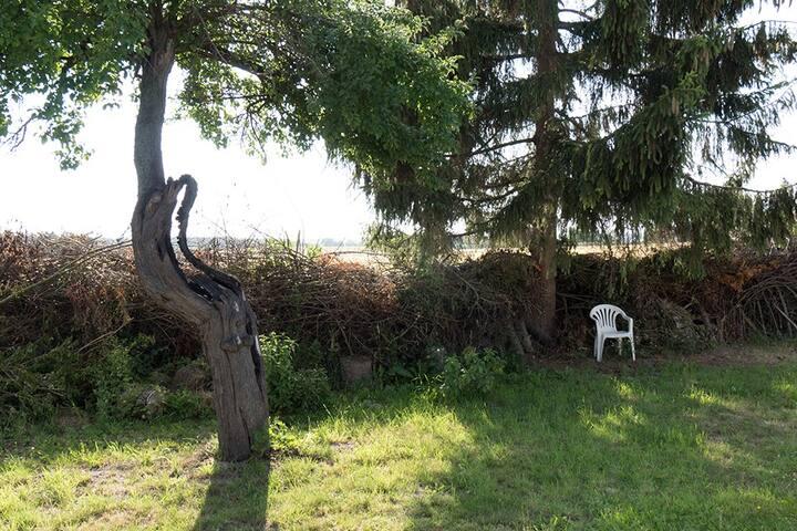 Haus mit Garten nahe Neubrandenburg