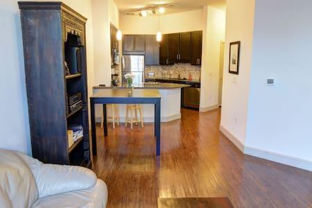 New apartment in Downtown Denver - Denver - Apartment