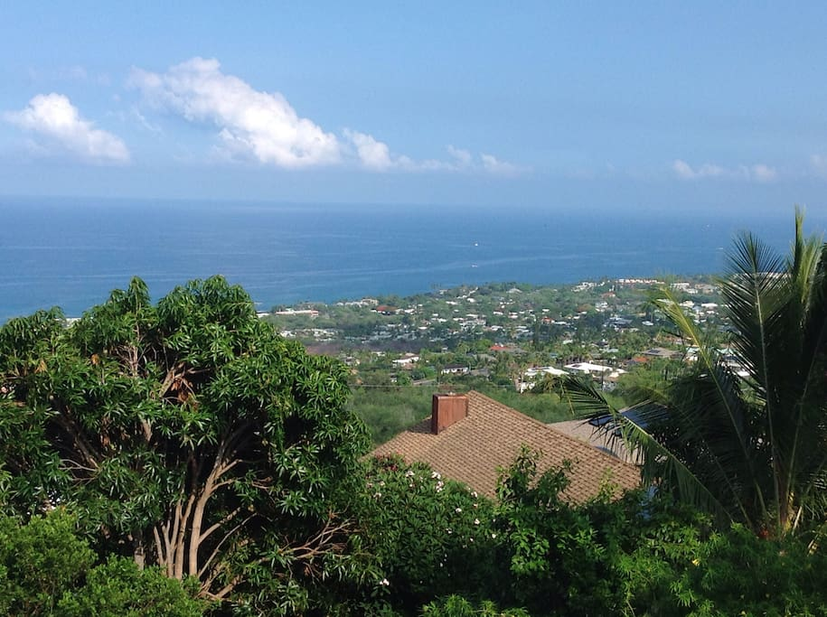 Full ocean view from your lanai, living room and bedrooms.
