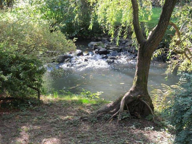 Private spacious rooms in beautiful creek setting - Milwaukie