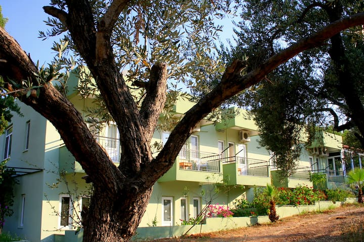 Patara Caretta Hotel, Patara'da Alternatif Tatil-6