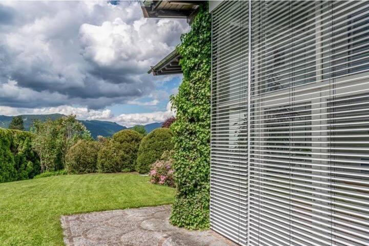 Modern forest villa