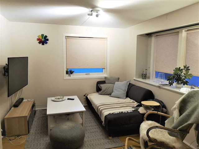 Cozy apartment near the city center. 1-4 people.