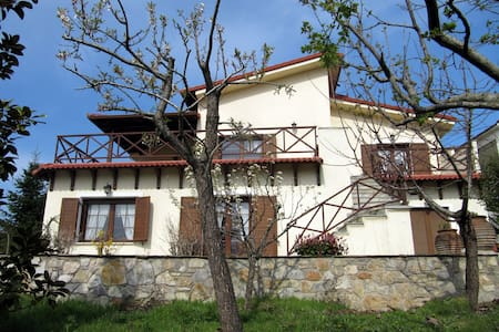 Koniskos Traditional Villa