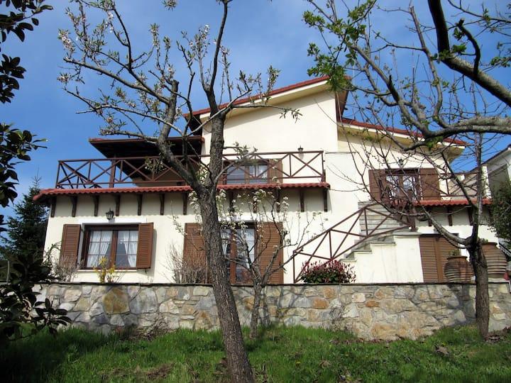Koniskos Traditional Villa