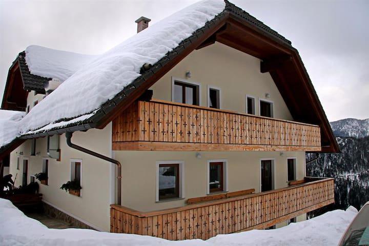 Room for 2 in Logarska valey