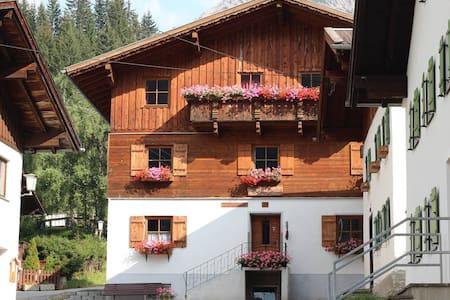 Bergbauernhof Friedl - Fewo Dremelspitze