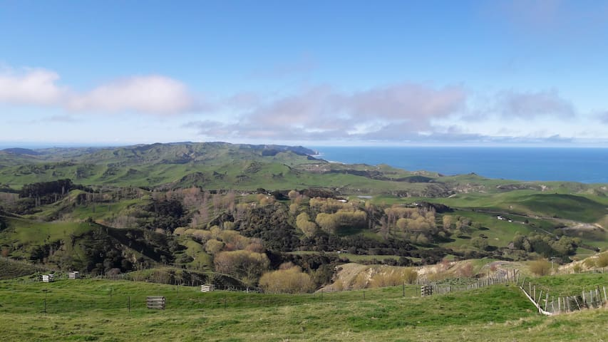Panoramic views from Te Mata Peak to Bare Island