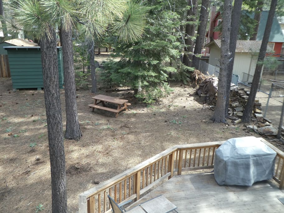 Back yard from upper window