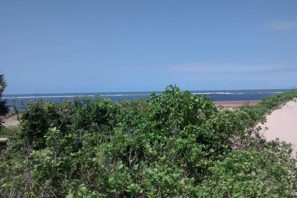 Angel Bay Beach Sandunes
