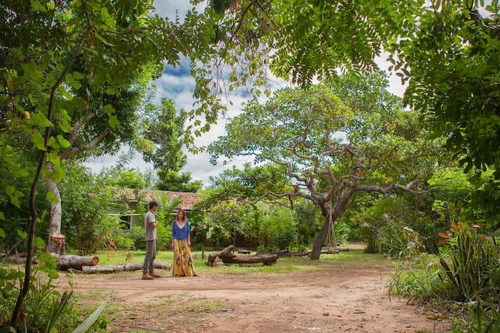 Hospedagem da Fazenda - Casa do Povo da Terra