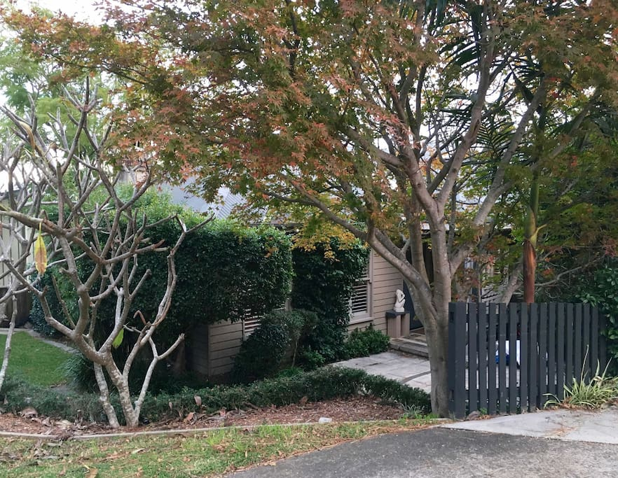 House frontage tucked away from street, native garden