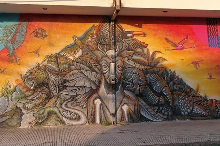 AMPLIO en el Centro de Sudamérica por la Callejas