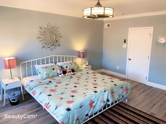 (5) top master room private bath , in fells point