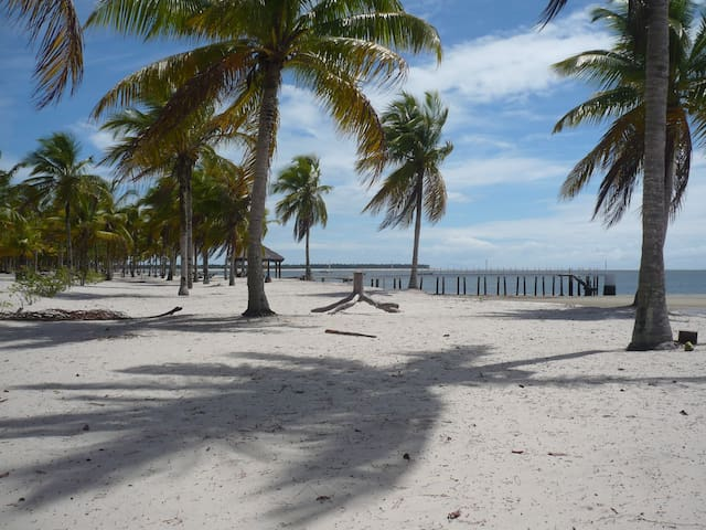 VIP villa beachfront .