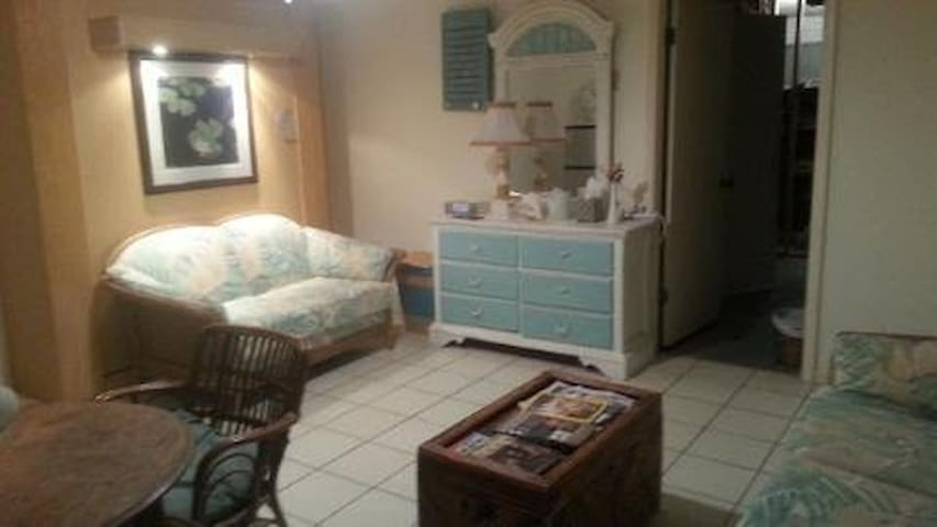 Beach Cottage Apt in Dunedin, FL - Dunedin - Apartment