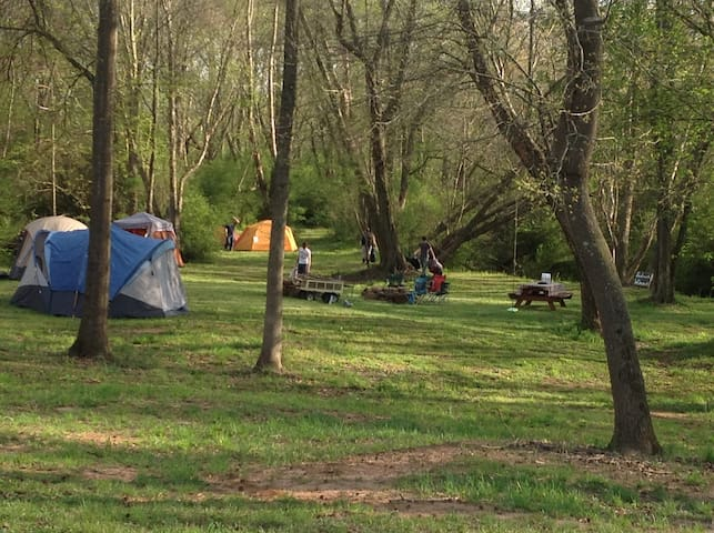 Camp at the center line total eclipse Seneca SC #7