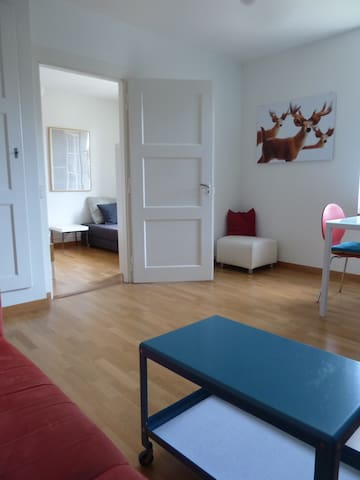 fully furnished appartment 1st fl. - Berne - Flat