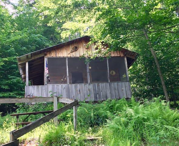 Owl's Neat Cabin