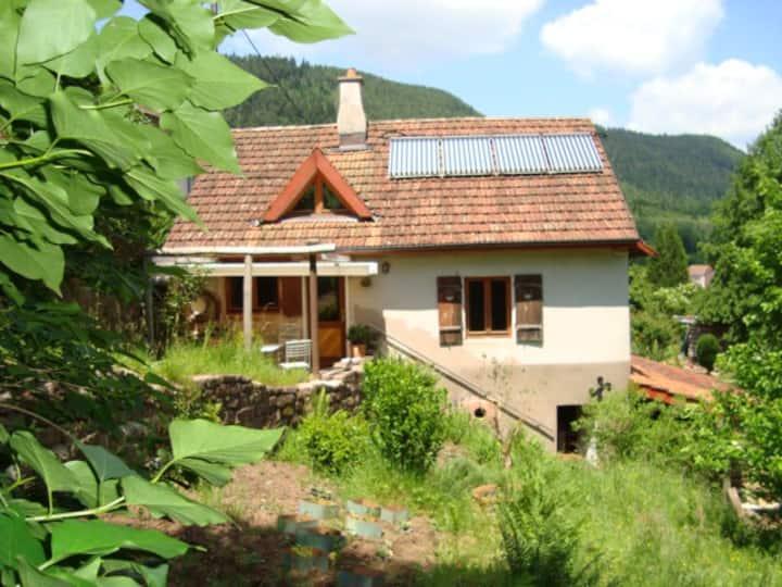 romantisches Ökohaus am Waldrand