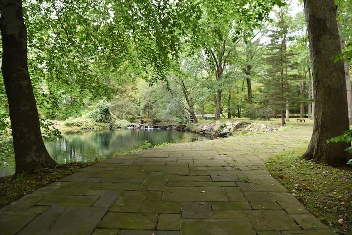 zen house pond