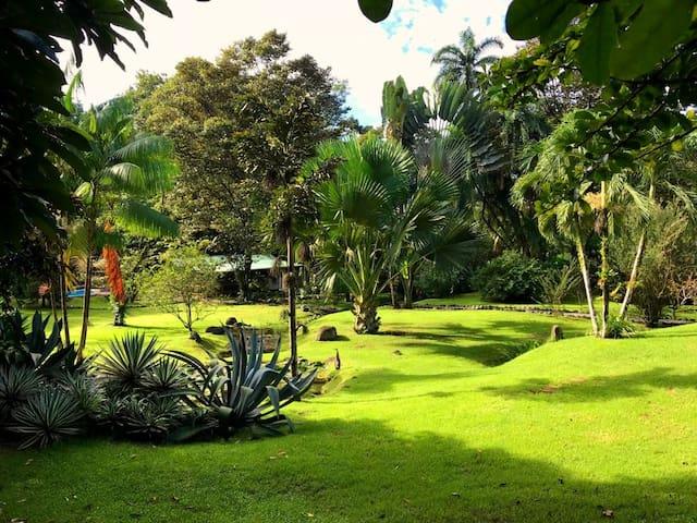 "BuenaOnda Lodge Ojochal - Lodge ""La Casa Papaye"""