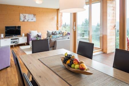 Modern spacious apartment in Flims