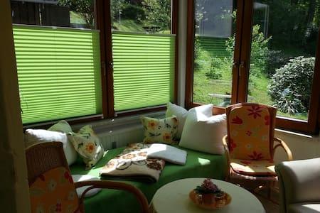 Schöne, Sonnige Wintergartenwohnung - Bad Schandau - Wohnung