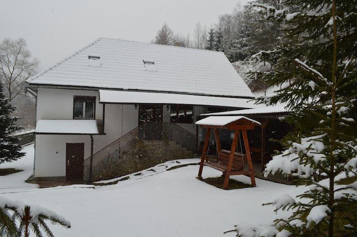 Lovely retreat in the heart of Transylvania - Ivăniș - Huis