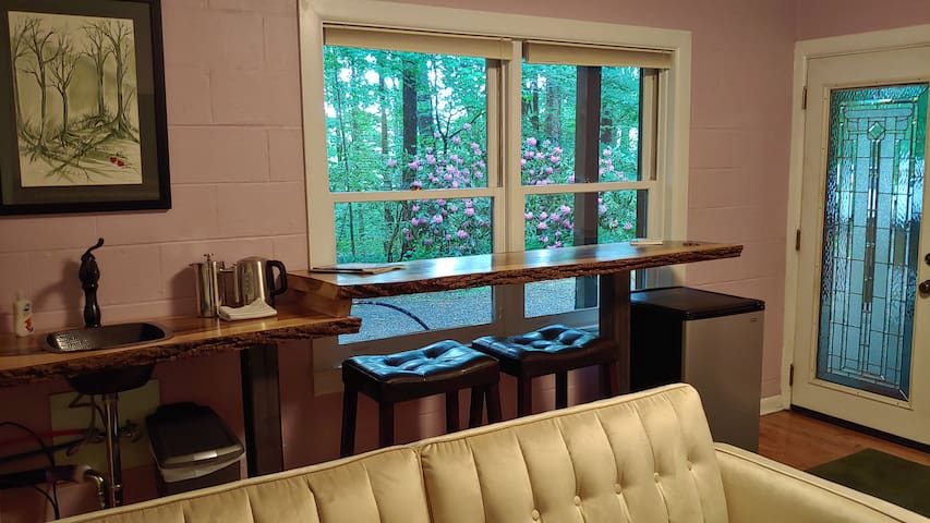 The living room contains space to relax, enjoy the view, and utilize the kitchenette